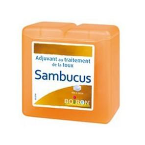 Sambucus, Pâtes Pectorales