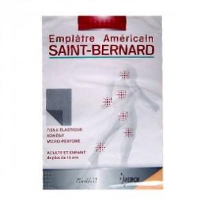 SAINT BERNARD EMPL GM